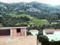 Vinařská oblast Dingač